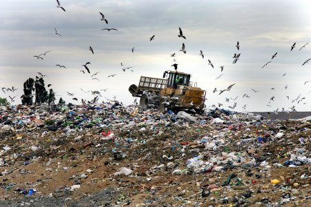 Piano rifiuti, Lazio verso il referendum. E Paul Connett va a Messina
