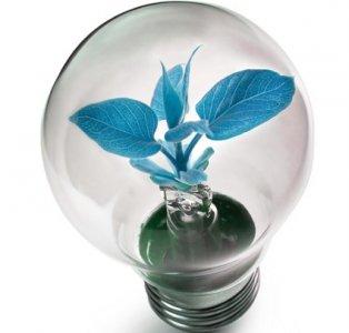 Le opportunità della blue economy