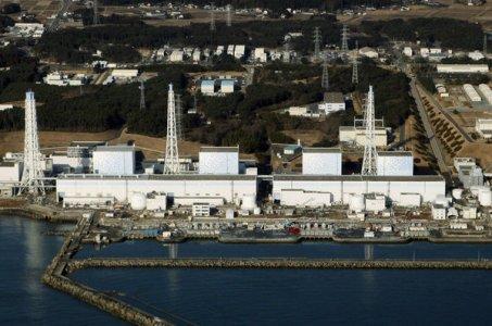 Fukushima: inaffidabile il monitoraggio delle radiazioni