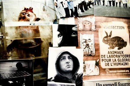 Animal Liberation Front. Intervista al regista Jérôme Lescure
