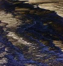 Bp e Golfo del Messico. Il punto della situazione a 8 mesi dal disastro