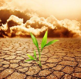 Dalla sostenibilità alla resilienza: imparare a riprendersi in fretta