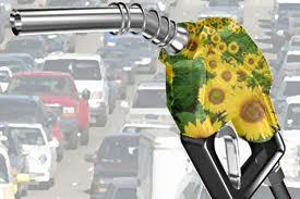 Esiste un futuro per i biocarburanti?