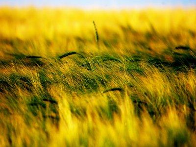 Marcia per la terra, in cammino per la difesa del suolo