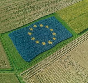 PAC, prosegue il processo di riforma della Politica Agricola Comune