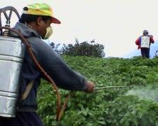 Agricoltura, cala l'uso di fertilizzanti: -9,6% nel 2009