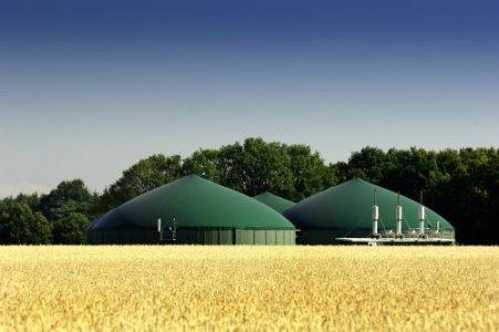No inceneritori, biomasse e biogas in Umbria: 11 maggio manifestazione a Terni