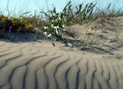 Ambiente e legalità con i campi estivi di Legambiente e Libera