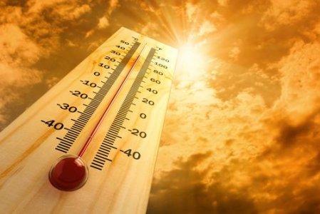 Cambiamenti climatici: conferenza internazionale su clima e città