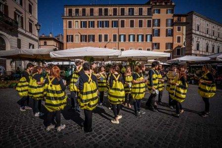 """""""Basta ai pesticidi killer"""": api attiviste in tutta Italia"""