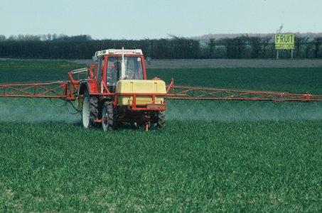 """OGM: """"subito la clausola di salvaguardia"""""""