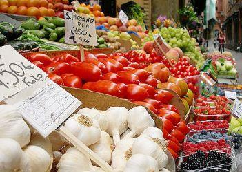 Riconvertire l'agricoltura italiana al biologico