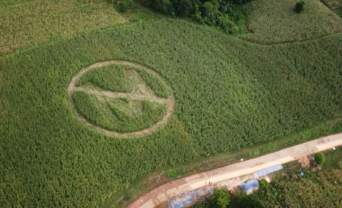 OGM: Monsanto rinuncia a coltivazione in Europa