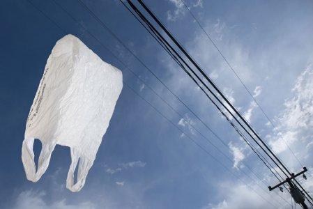 Rifiuti, Europa verso la messa al bando dei sacchetti usa e getta non compostabili