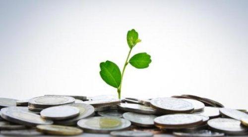 Banche a confronto: vince la finanza etica e sostenibile