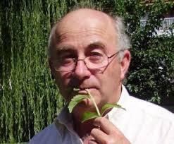 """Piante che curano e piante proibite, la """"Dulce Revolución"""" di Josep Pàmies"""