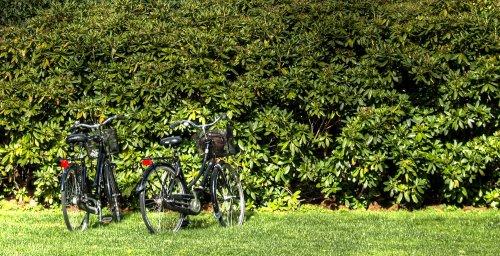 Italia-Spagna in bicicletta con tappa negli ecovillaggi: un'avventura ecosostenibile