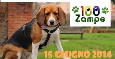 100 Zampe: i cittadini adottano il verde pubblico per i cani di Roma