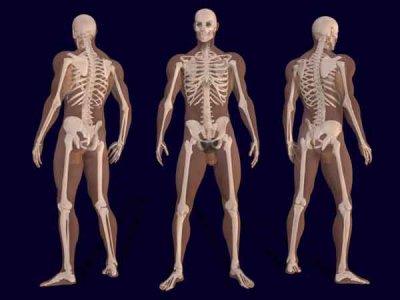 Densità ossea: l'escamotage per produrre nuovi malati
