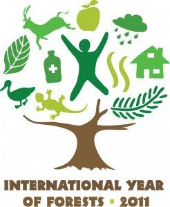 L'Onu proclama il 2011 Anno internazionale delle foreste