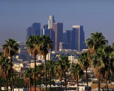Transizione a Los Angeles? Una missione non impossibile