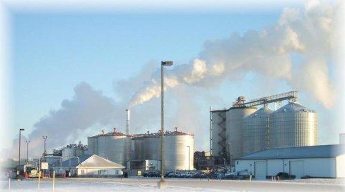 """""""Le centrali a biomasse sono tutte illegali"""""""