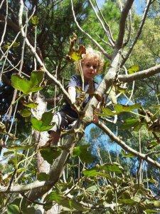 Asilo nel bosco: prima esperienza in Italia