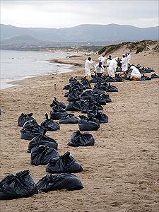 Disastro ambientale a Porto Torres: la marea nera si  espande