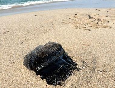 Porto Torres. Per il Ministro dell'Ambiente
