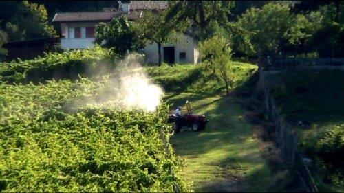 Contaminava con pesticidi il terreno del vicino, condannato