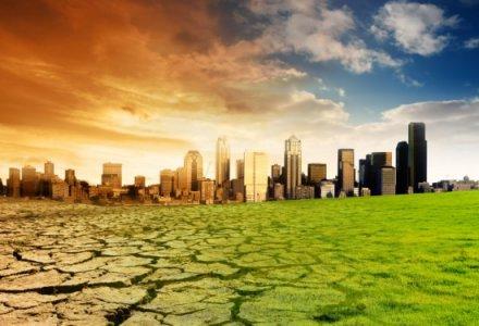 I cambiamenti climatici e la biodiversità: un futuro in pericolo.