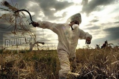 """Il """"regime"""" Monsanto: la multinazionale che si permette di dichiarare guerra a Iarc e Oms"""