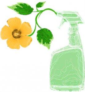 Detersivi 'sostenibili', pulire la casa senza danneggiare l'ambiente