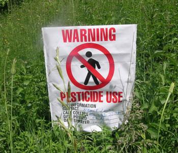 Pesticidi, ancora troppi residui chimici nei nostri piatti