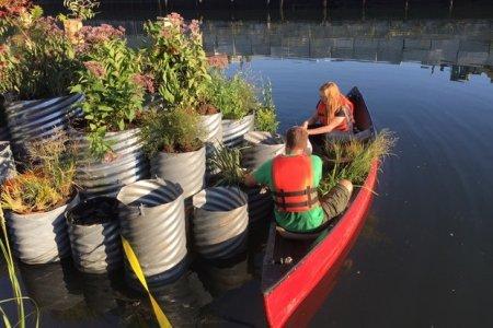"""Le """"oasi"""" galleggianti che ripuliscono il canale"""