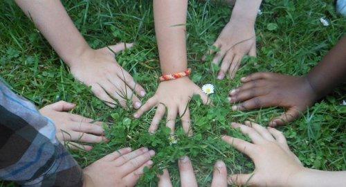 Buone pratiche e sostenibilità: le opportunità per i giovani