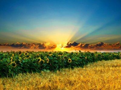 Paesaggi di qualità, in equilibrio tra sostenibilità e bellezza
