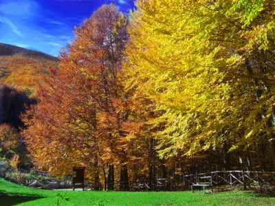 La gestione dei parchi in Campania diventa di nomina politica