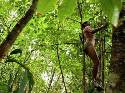Brasile, l'Amazzonia strappata alle sue tribù