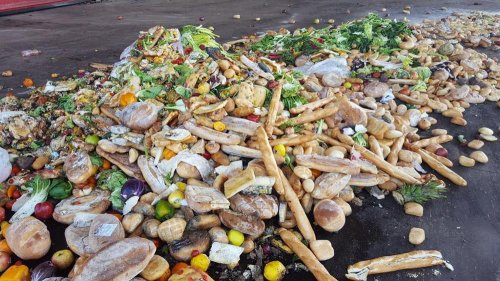 Cibo sprecato: impatto devastante sull'ambiente