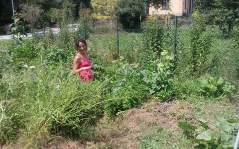 Sara, dalla metropoli alla social farm