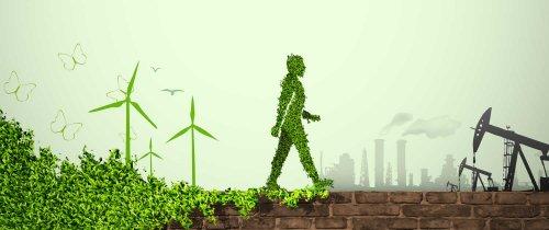 L'energia si risparmia così: vivere green, impariamo da Paea