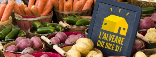 L'Alveare che dice sì! Già 150 i gruppi in Italia per comprare sostenibile