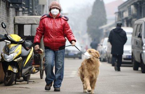 CO 2 fuori controllo, verso la catastrofe con ottimismo.