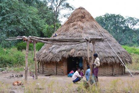 India: tribù cacciata e parte la ricerca di uranio
