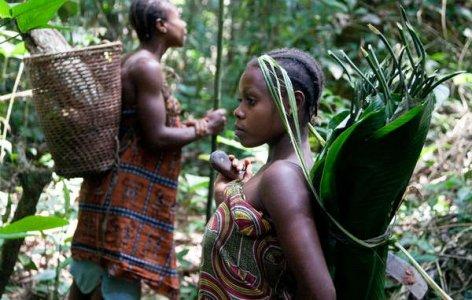 Survival e Wwf: rotta la trattativa per salvaguardare i diritti dei nativi in Africa