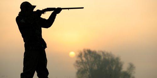 È più pericoloso il lupo o il cacciatore?