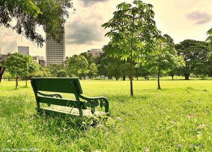 Costruiamo i nostri angoli green anche in città