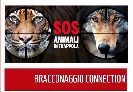 Bracconaggio Connection: settemila specie minacciate