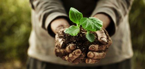 Nasce l'Alleanza per una nuova riforma dell'agricoltura